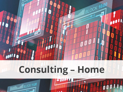 Diso-Consulting-Services-Home